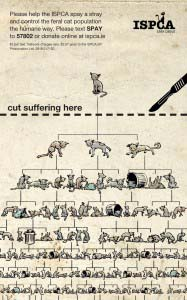 NNI Press Ad of the Month July - Cut the Cruelty by Rothco Social for ISPCA